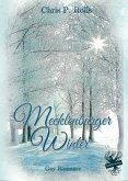 Mecklenburger Winter