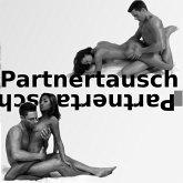 Partnertausch: Geschichten über Swinger-Sex, Gangbang, Pärchen-Clubs, Orgien, Dreier-Sex und andere freie Liebe (MP3-Download)