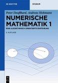 Numerische Mathematik 1 (eBook, PDF)