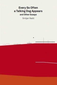 2G Essays: Smiljan Radic - Radic, Smiljan