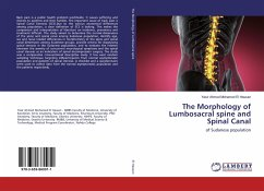 The Morphology of Lumbosacral spine and Spinal Canal