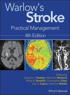 Warlow's Stroke (eBook, ePUB)
