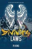 The Divinity Laws (eBook, ePUB)