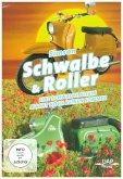 Simson Schwalbe & Roller - Eine Schwalbe allein macht noch keinen Sommer, 1 DVD