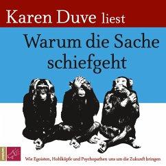 Warum die Sache schiefgeht (MP3-Download) - Duve, Karen