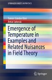 Emergence of Temperature in Examples and Related Nuisances in Field Theory (eBook, PDF)