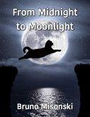 From Midnight to Moonlight (eBook, ePUB)