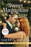 Stealing Home (eBook, ePUB)