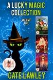 A Lucky Magic Collection: Magic and Mayhem Universe (eBook, ePUB)