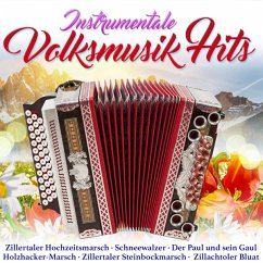 Instrumentale Volksmusikhits - Diverse