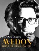 Avedon: Behind the Scenes 1964-1980
