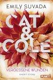 Cat & Cole: Vergessene Wunden (eBook, ePUB)