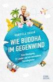 Wie Buddha im Gegenwind (eBook, ePUB)