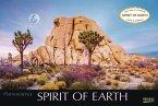 Spirit of Earth 2020