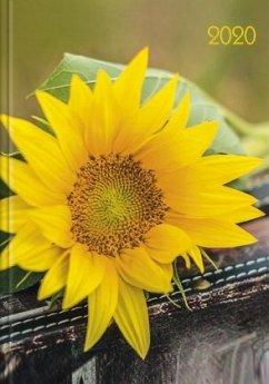 Lady-Timer Sonnenblume 2020