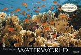 Waterworld 2020