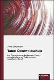 Tatort Odenwaldschule