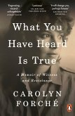 What You Have Heard Is True (eBook, ePUB)