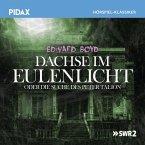 Dachse Im Eulenlicht Oder Die Suche Des Peter Talion (MP3-Download)