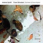 Franz Schubert: Sonatas & Impromptus