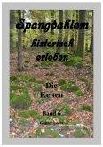 Spangdahlem historisch erleben, Band 6