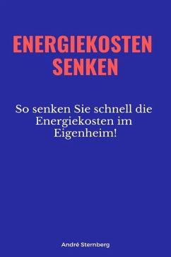 Energiekosten senkenEnergiekosten senken (eBook, ePUB) - Sternberg, Andre
