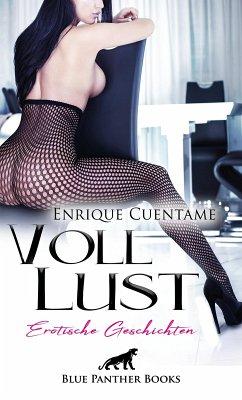VollLust   22 Erotische Geschichten (eBook, PDF) - Cuentame, Enrique
