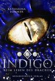 Indigo (eBook, ePUB)
