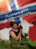 Norwegen in Gummistiefeln (eBook, ePUB)