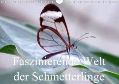 Faszinierende Welt der Schmetterlinge (Wandkalender 2020 DIN A4 quer)
