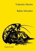 Bahía Salvador (eBook, ePUB)