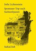 Spontaner Trip nach Sachsenhausen (eBook, ePUB)