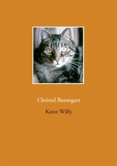 Kater Willy (eBook, ePUB)