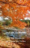 Indian Summer (eBook, ePUB)