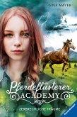 Zerbrechliche Träume / Pferdeflüsterer Academy Bd.5