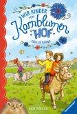 Kühe im Galopp / Wir Kinder vom Kornblumenhof Bd.3