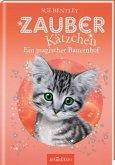Ein magischer Bauernhof / Zauberkätzchen Bd.17