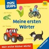 Mein erster Bücher-Würfel: Meine ersten Wörter (Bücher-Set)
