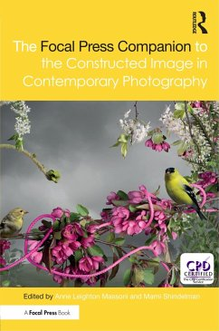 The Focal Press Companion to the Constructed Image in Contemporary Photography (eBook, PDF)