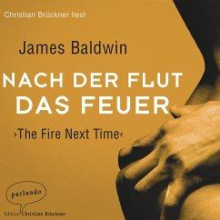Nach der Flut das Feuer (Ungekürzte Lesung) (MP3-Download) - Baldwin, James
