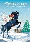 Weihnachten auf Kaltenbach / Ostwind für Erstleser Bd.4