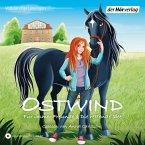 Für immer Freunde & Die rettende Idee / Ostwind für Erstleser Bd.1+2 (MP3-Download)