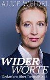 Widerworte: Gedanken über Deutschland (eBook, ePUB)