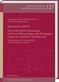 Elephantine XXXVI. Der ptolemäische Satettempel und seine Nebenanlagen und die Treppenanlage des nördlichen Sakralbezirk