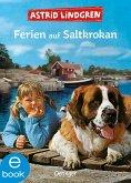 Ferien auf Saltkrokan (eBook, ePUB)