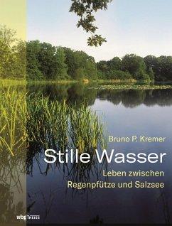 Stille Wasser (eBook, ePUB) - Kremer, Bruno P.