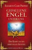 Gefallene Engel unter uns (eBook, ePUB)