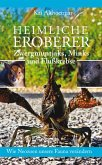 Heimliche Eroberer (eBook, ePUB)