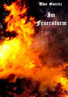 Im Feuersturm (eBook, ePUB)