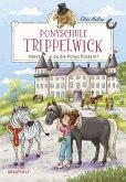 Hörst du die Ponys flüstern? / Ponyschule Trippelwick Bd.1